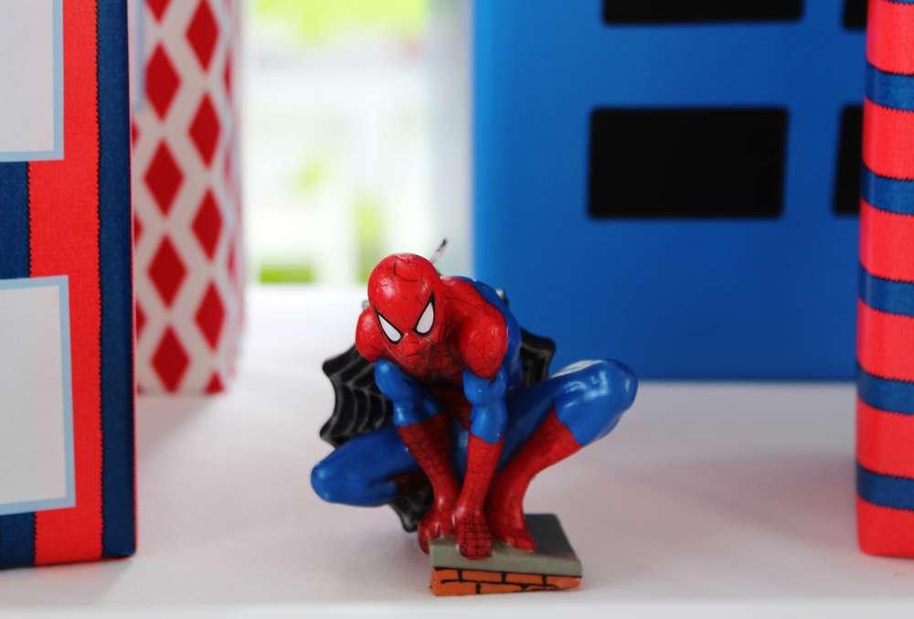Spider Man Theme Birthday Party for Boys